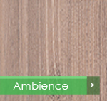 piso-Ambience